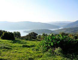 Parque-Natural-de-los-Alcornocales-001
